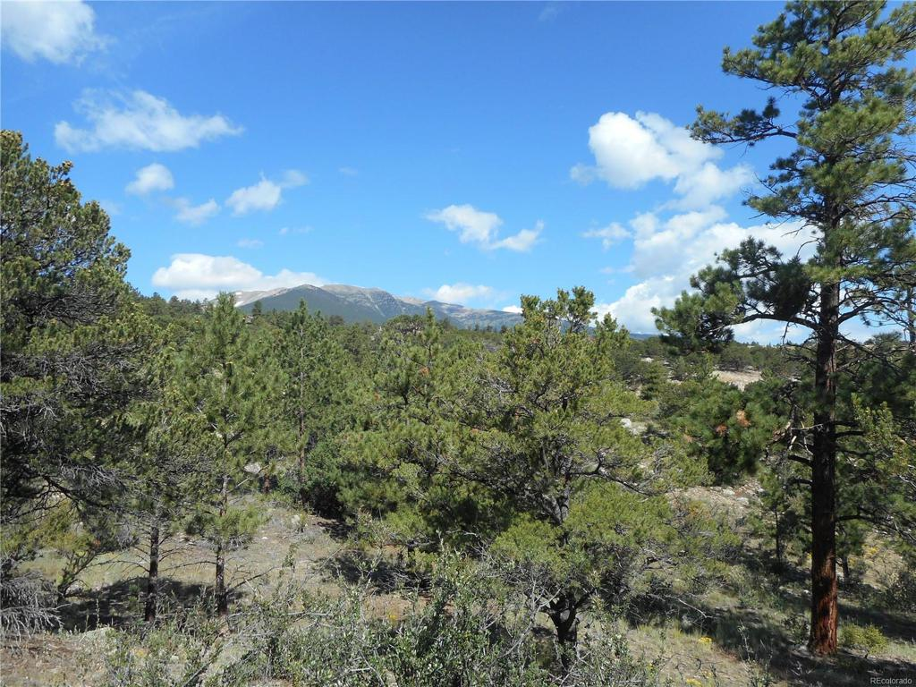 Photo of home for sale at 30060 Princeton Hills, Buena Vista CO
