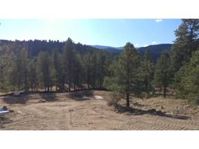 Property for sale at 28208 Lone Elk Trail, Evergreen,  Colorado 80439