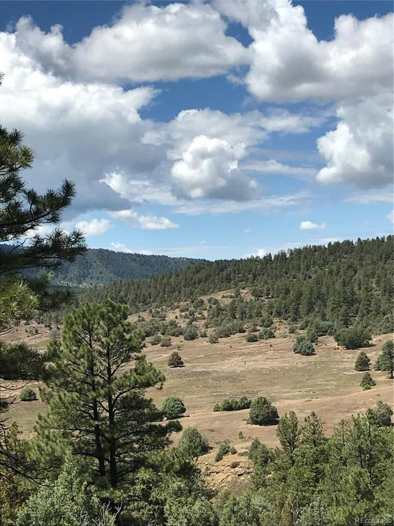 Photo of home for sale at 371 Cat Creek Overlook, Pagosa Springs CO