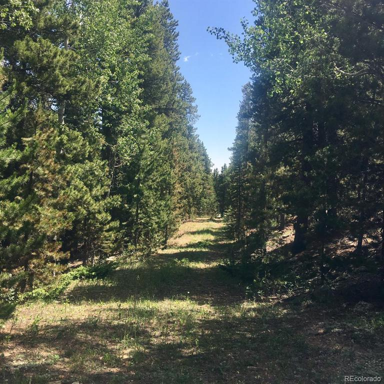 Photo of home for sale at Lot A Pine Valley Ranch Estates, Evergreen CO