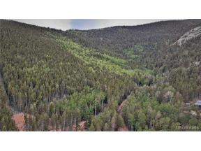 Property for sale at 10498 Christopher Drive, Conifer,  Colorado 80433