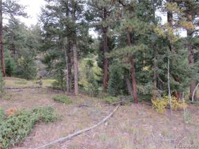 Property for sale at 11615 South US Hwy 285 Frontage Road, Conifer,  Colorado 80433