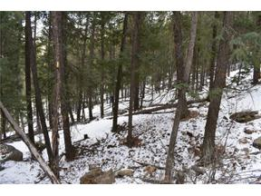 Property for sale at 0 Clear Creek Road, Evergreen,  Colorado 80439