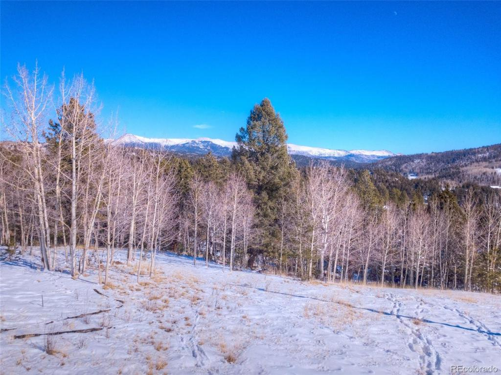 Photo of home for sale at 696 May Queen Drive, Cripple Creek CO