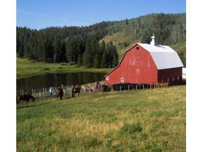 Property for sale at 46600 County Road 129, Steamboat Springs,  Colorado 80487