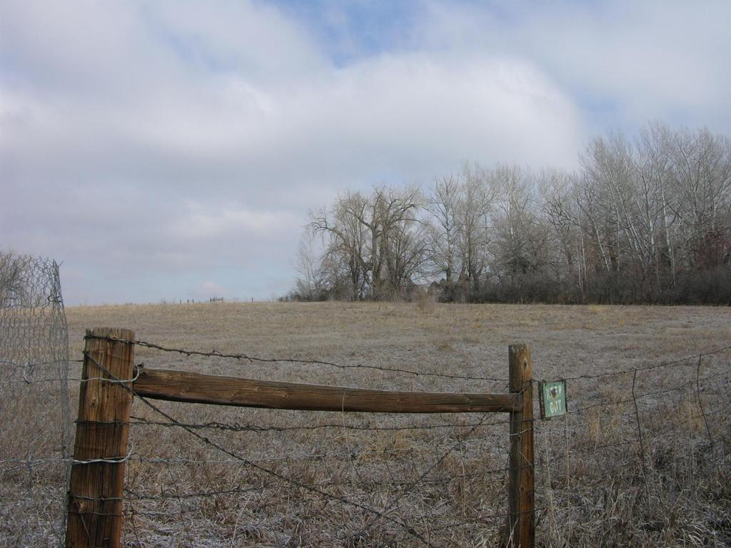 Photo of home for sale at 10115 SHERIDAN Boulevard, Westminster CO