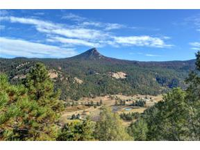 Property for sale at 17038 Blue Heron Drive, Pine,  Colorado 80470