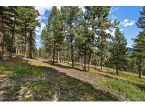 Property for sale at 7313 Plowsher Way, Morrison,  Colorado 80465