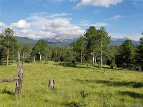 Property for sale at 9615 West US 24, Divide,  Colorado 80814
