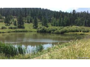 Property for sale at 33195 Diana Road, Pine,  Colorado 80470