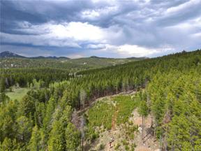 Property for sale at 11755 Silver Fox Lane, Conifer,  Colorado 80433