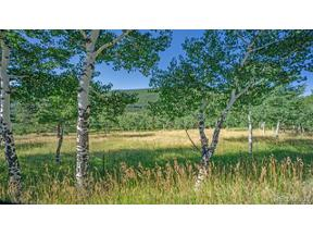 Property for sale at Old Squaw Pass Road, Evergreen,  Colorado 80439