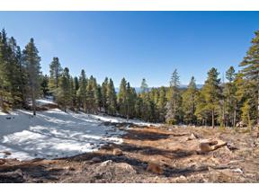 Property for sale at 11275 Bear Run Trail, Conifer,  Colorado 80433