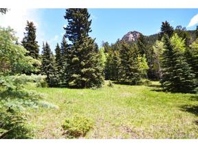 Property for sale at 14 Witter Gulch Road, Evergreen,  Colorado 80439