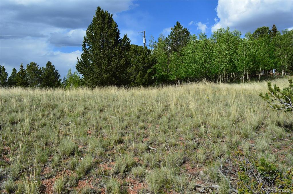 Photo of home for sale at 1496 Fairview Drive, Cripple Creek CO