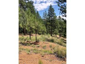 Property for sale at 16348 Ouray Road, Pine,  Colorado 80470