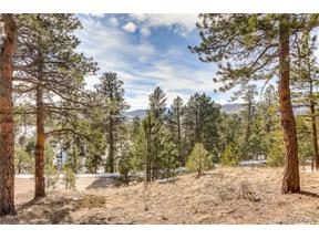 Property for sale at 29033 Wild Rose Drive, Evergreen,  Colorado 80439