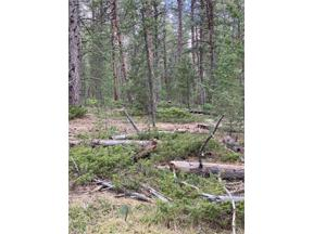Property for sale at Lot 8X TBD Wallace Avenue, Conifer,  Colorado 80433