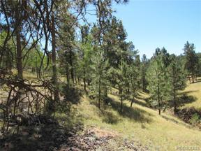 Property for sale at 11845 Stallion Drive, Pine,  Colorado 80470