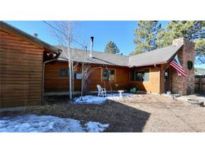 Property for sale at 16697 Jefferson Street, Pine,  Colorado 80470