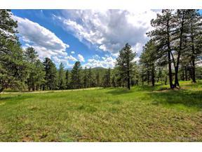 Property for sale at 8191 Homesteader Drive, Morrison,  Colorado 80465