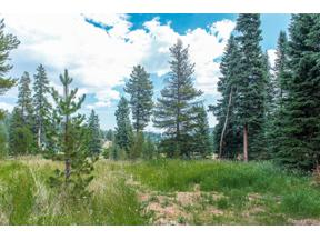 Property for sale at TBD Lot Buffalo Park Road, Evergreen,  Colorado 80439