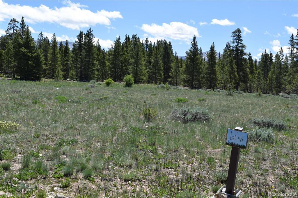 Photo of home for sale at 350 Snowshoe Rabbit Drive, Leadville CO