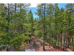 Property for sale at 8222 Stags Leap Trail, Morrison,  Colorado 80465