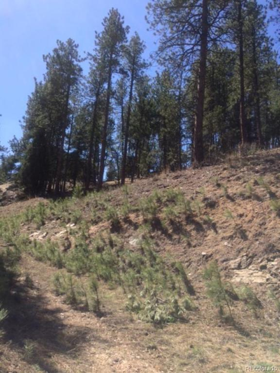 Photo of home for sale at 3004 Piney Ridge Road, Evergreen CO