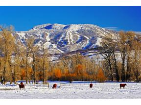 Property for sale at 25740 26185 US Highway 40, Steamboat Springs,  Colorado 80487