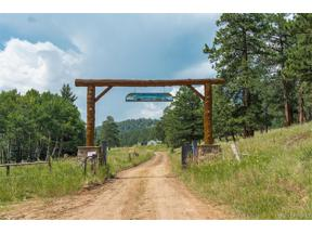 Property for sale at 37525 Buffalo Park Road, Evergreen,  Colorado 80439