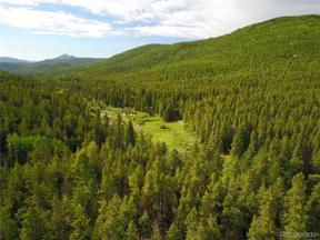 Property for sale at 000 Griffin Drive, Conifer,  Colorado 80433