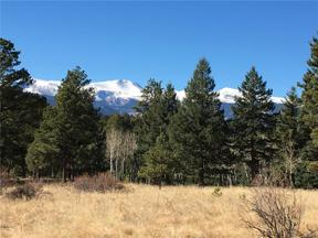 Property for sale at 33391 Buffalo Park Road, Evergreen,  Colorado 80439