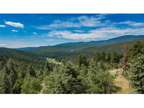Property for sale at 29653 Meadow Spur Lane, Evergreen,  Colorado 80439