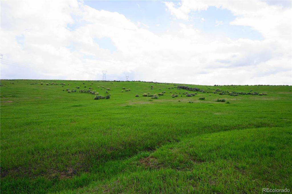 Photo of home for sale at 1560 County Road 15, Meeker CO