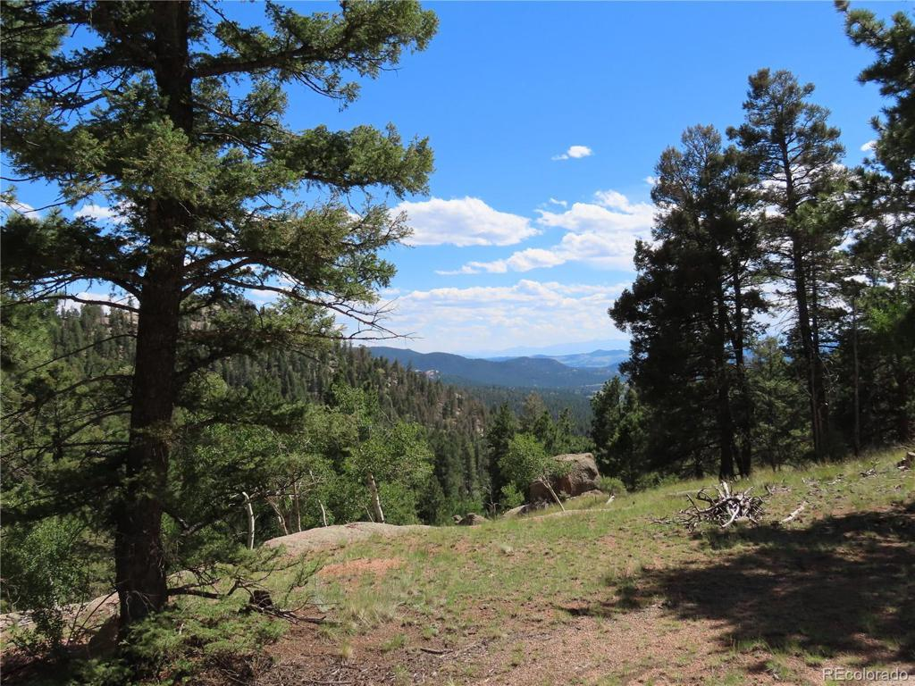 Photo of home for sale at 2494 Mountain Estates Road N, Florissant CO