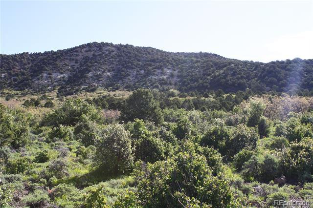Photo of home for sale at 000 Coon Creek Road, Mesa CO