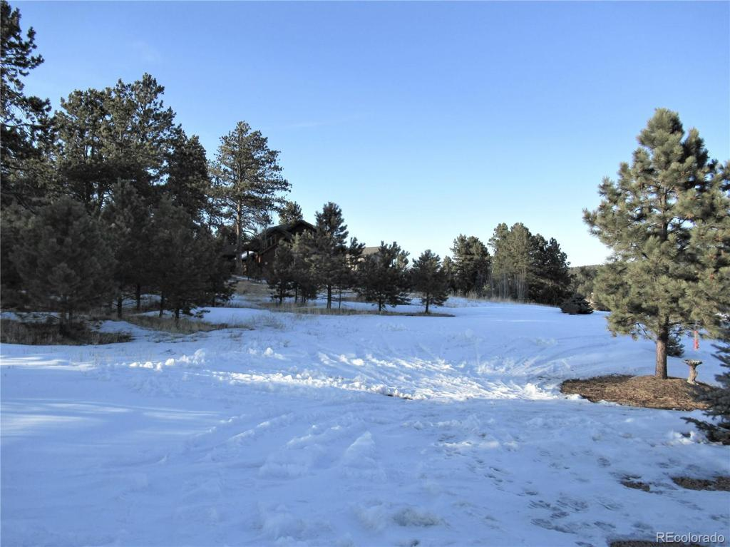Photo of home for sale at 1210 Woodland Valley Ranch Drive, Woodland Park CO