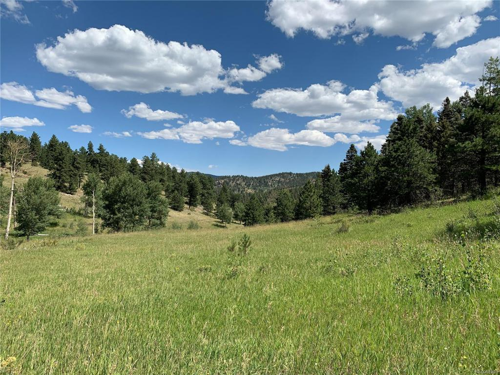 Photo of home for sale at Eagles Nest Rd., Westcliffe CO