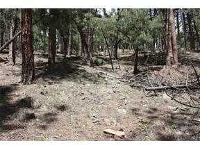 Property for sale at 27425 Troublesome Gulch Road, Evergreen,  Colorado 80439