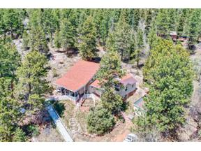 Property for sale at 12581 US Highway 285, Conifer,  Colorado 80433