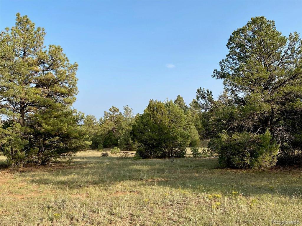 Photo of home for sale at TBD Rancho La Garita, Weston CO