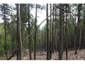 Property for sale at 1 Lodgepole Drive, Evergreen,  Colorado 80439