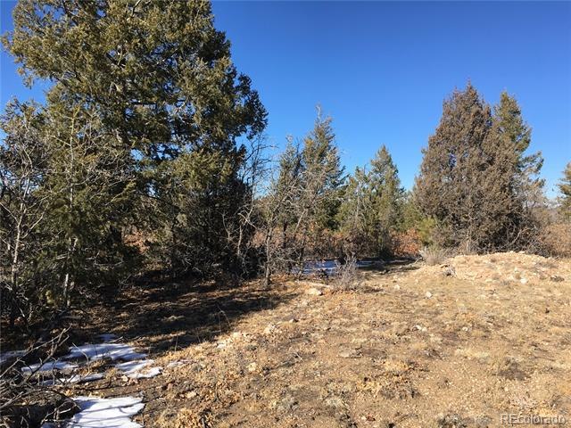 Photo of home for sale at Peakview Ridge Road, Canon City CO
