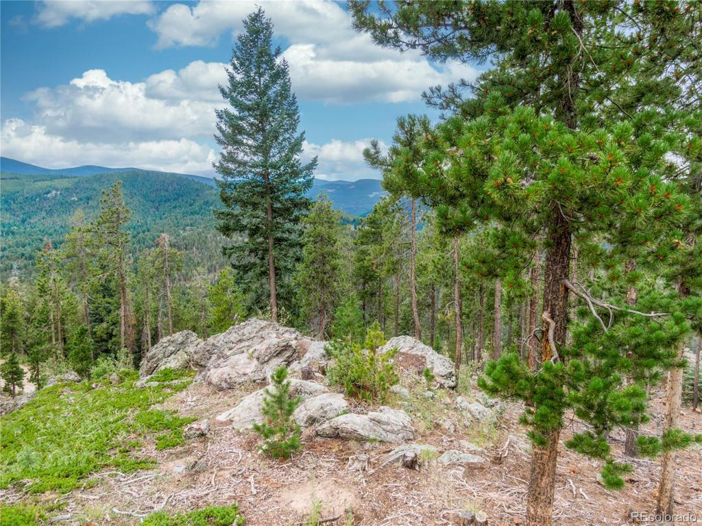 Photo of home for sale at 000 Granite Crag Circle, Evergreen CO
