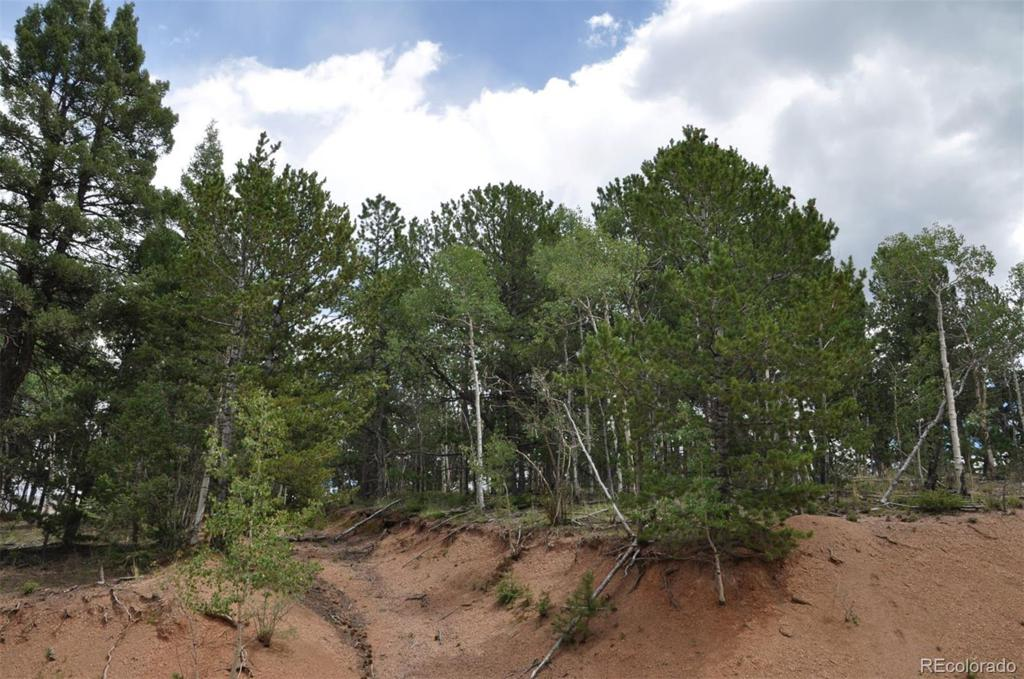Photo of home for sale at Horseshoe Drive, Divide CO