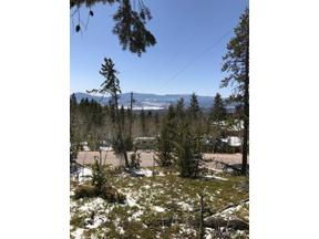 Property for sale at 11272 Conifer Mountain Road, Conifer,  Colorado 80433