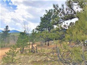 Property for sale at 63 El Lobo Lane, Bailey,  Colorado 80421
