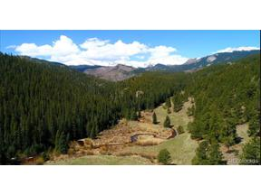 Property for sale at 7824 Upper Bear Creek Road, Evergreen,  Colorado 80439
