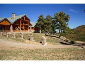 Property for sale at 6600 County Road 363, La Veta,  Colorado 81055